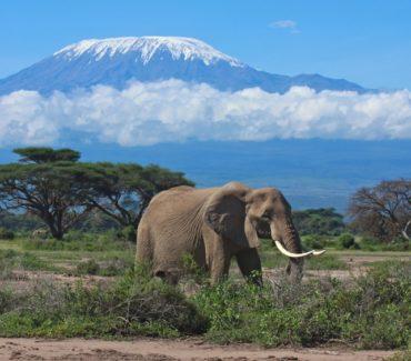 Tanzania offerte viaggi in africa