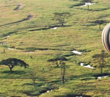 I safari e i Parchi più belli dell'Africa